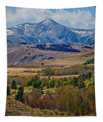 Tapestry featuring the photograph  Sierras Mountains by Mae Wertz