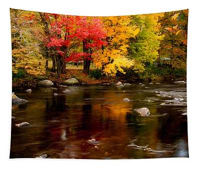 Autumn Colors Reflected Tapestry