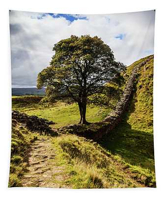 Below Winshields Is The Sycamore Gap Tapestry