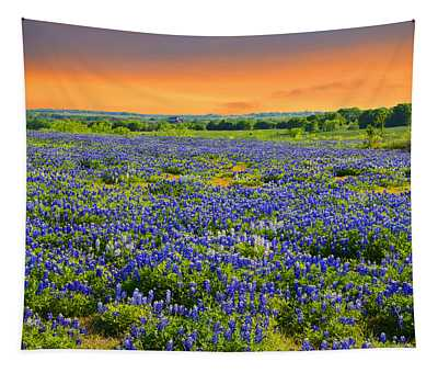 Bluebonnet Sunset  Tapestry