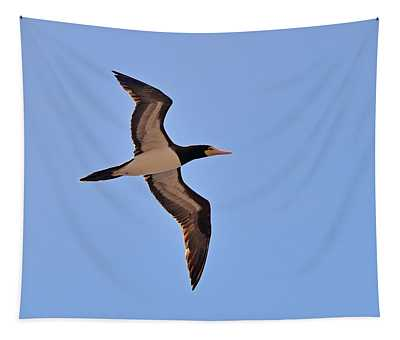 Brown Booby In Flight Tapestry