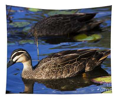 Brown Duck Tapestry