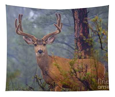 Buck Deer In A Mystical Foggy Forest Scene Tapestry