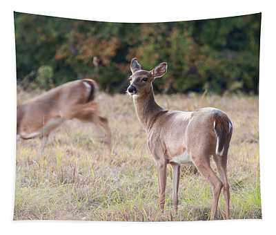 Deer At Paynes Prairie Tapestry