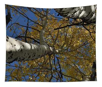 Fall Aspen Tapestry