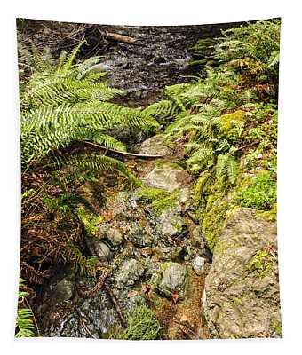 Ferns And Redwood Sorrel Muir Woods Tapestry