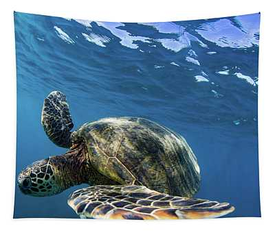 Green Sea Turtle Swimming Tapestry