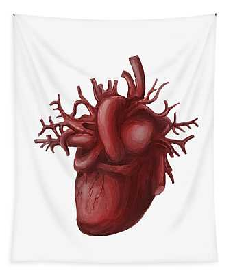 Human Heart Medical Diagram Isolated On White Tapestry