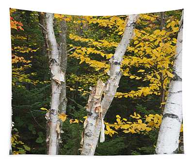 Kancamagus Highway - White Mountains New Hampshire Tapestry