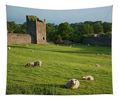 Kells Priory  Count Kilkenny, Ireland Tapestry