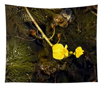 Leafy Bladderwort Tapestry