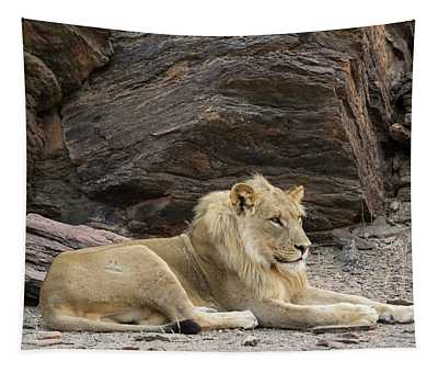Male Lion Panthera Leo Resting Tapestry