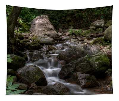 Parfrey's Glen Creek Tapestry