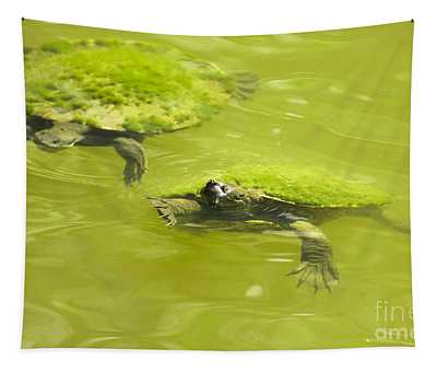 Pond Turtles Tapestry