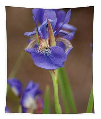 Purple Bearded Iris Tapestry