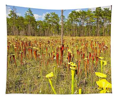 Schnell's Pitcher Plant Tapestry