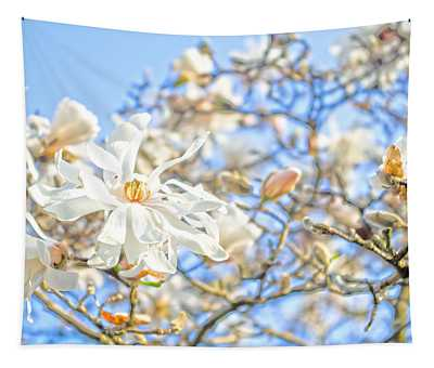 Star Magnolia Tapestry