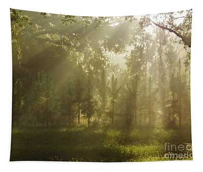 Sunshine Morning Tapestry