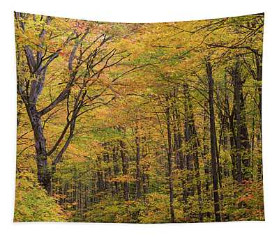 Trees In A Forest, Schoolcraft County Tapestry