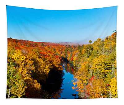Trees In Autumn At Dead River Tapestry