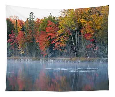 Trees In Autumn At Lake Hiawatha, Alger Tapestry