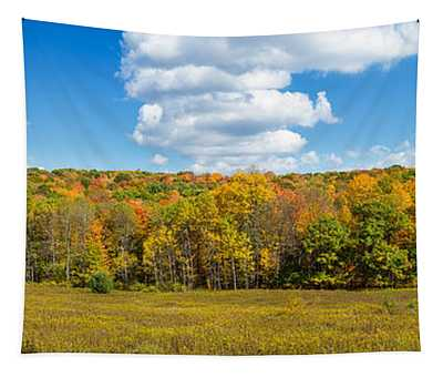 Trees In Autumn, New York State, Usa Tapestry
