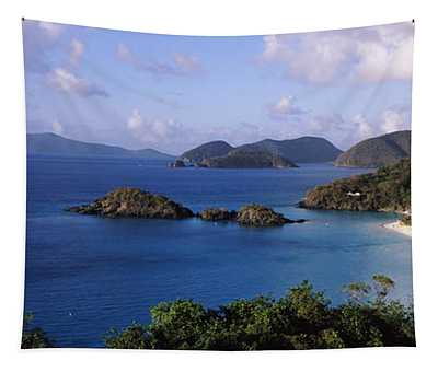 Trees On The Coast, Trunk Bay, Virgin Tapestry
