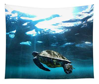 Turtle Rays Tapestry