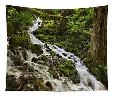 Wahkeena Creek Tapestry
