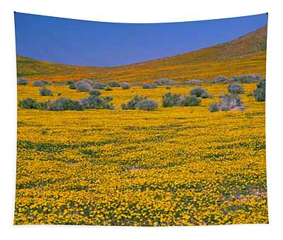 Wildflowers On A Landscape, California Tapestry