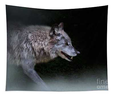 Wolf On The Prowl Tapestry