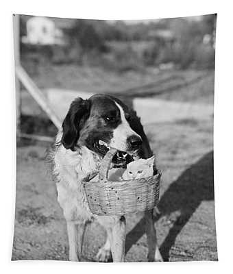 1930s Dog Holding Cat In Straw Basket Tapestry