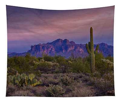 A Beautiful Desert Evening  Tapestry