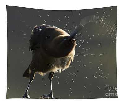Boat Tailed Grackle Tapestry