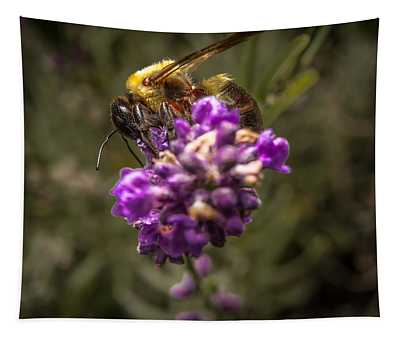 Carpenter Bee On A Lavender Spike Tapestry