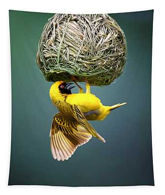 Masked Weaver At Nest Tapestry