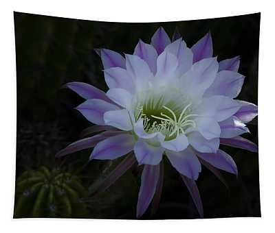 Night Blooming Cactus  Tapestry