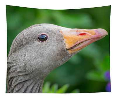 Portrait Of Greylag Goose, Iceland Tapestry