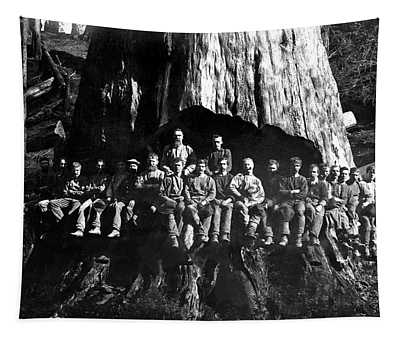 22 Loggers In Redwood Undercut -- 1884 Tapestry
