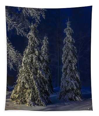 Rib Mountain State Park Snow Tapestry