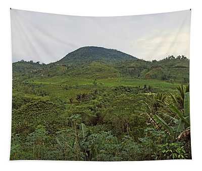Terraced Rice Field, Flores Island Tapestry