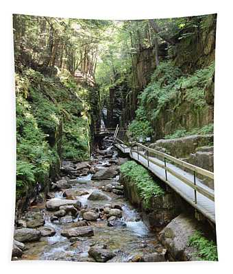 The Flume Gorge   Tapestry