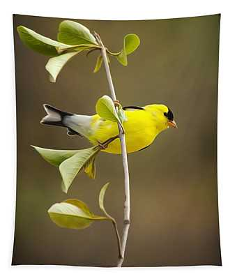 Finch Mixed Media Wall Tapestries