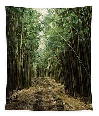 Bamboo Forest, Oheo Gulch, Seven Sacred Tapestry