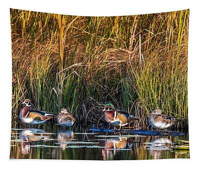 4 Wood Ducks Tapestry
