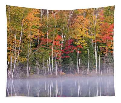 Reflection Of Trees In A Lake Tapestry