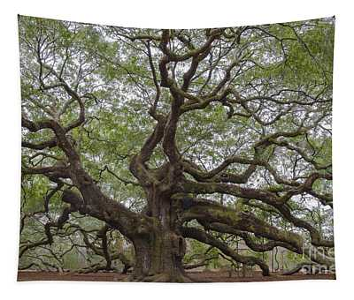 Sc Angel Oak Tree Tapestry