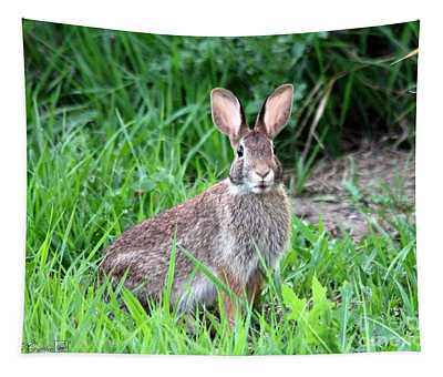 Wild Rabbit Tapestry