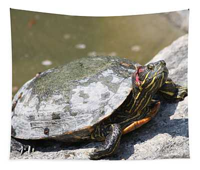 75 Year Old Turtle Moving On Tapestry