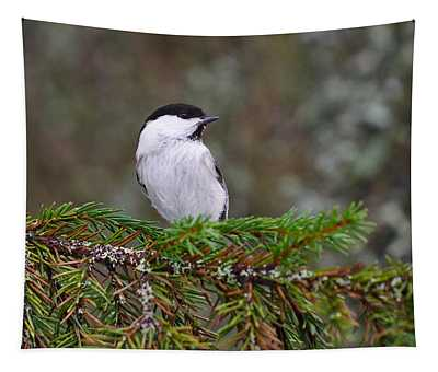 Willow Tit Pose Tapestry